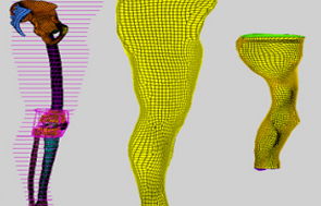 Developing a hexahedral mesh of the human leg
